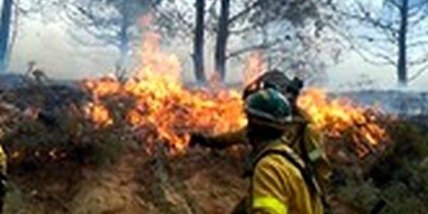 Personal lucha contra incendios