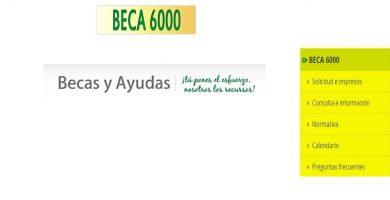 beca 6000 Andalucia