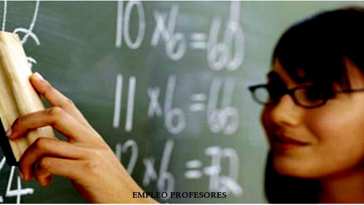 Empleo profesores