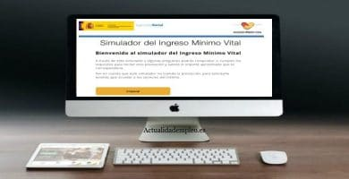 simulador ingreso minimo vital
