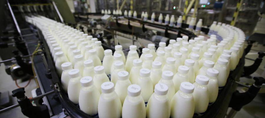 empleo sector lacteo